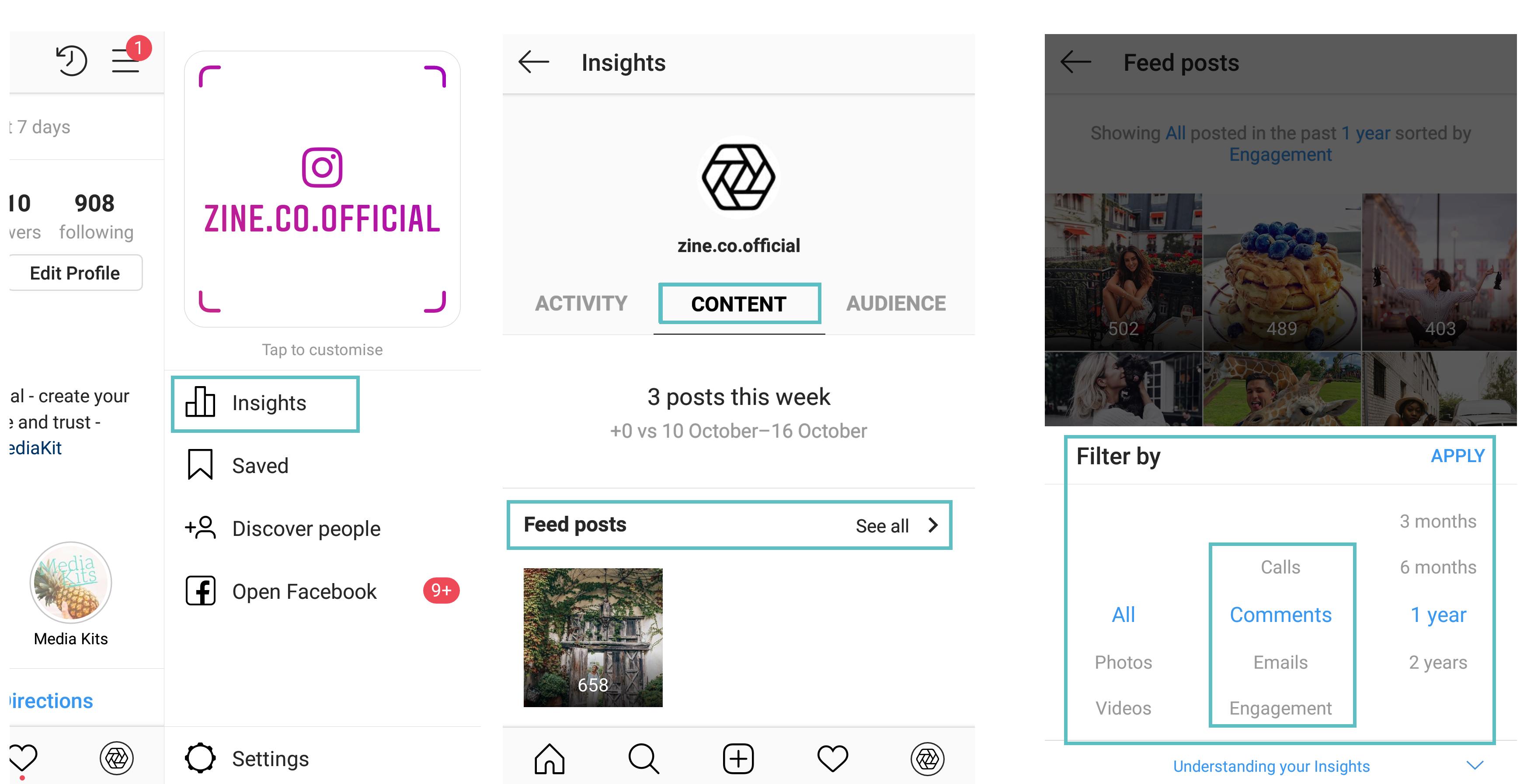 ZINE Influencer Marketing Blog |  engagement audience insights instagram